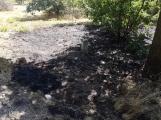 AKTUÁLNĚ: U vrcholu kopce Strážný, nedaleko Trhových Dušníků hoří les (25)