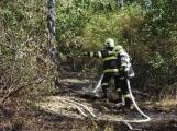 AKTUÁLNĚ: U vrcholu kopce Strážný, nedaleko Trhových Dušníků hoří les (17)