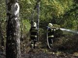 AKTUÁLNĚ: U vrcholu kopce Strážný, nedaleko Trhových Dušníků hoří les (6)