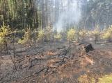 Požár v lese u Čenkova. Příčina - ohniště v lese na hrabance. ()