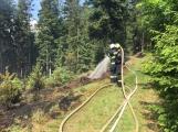 Požár v lese u Čenkova. Příčina - ohniště v lese na hrabance. (11)