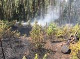 Požár v lese u Čenkova. Příčina - ohniště v lese na hrabance. (10)