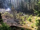 Požár v lese u Čenkova. Příčina - ohniště v lese na hrabance. (7)
