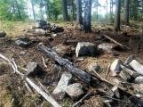 Požár v lese u Třemošné - Kazatelna (CHKO Brdy) (4)