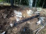 Požár v lese u Třemošné - Kazatelna (CHKO Brdy) (3)