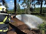 Požár v lese u Toku (CHKO Brdy) (12)