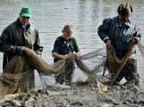V Rožmitále slavili myslivci i rybáři (58)