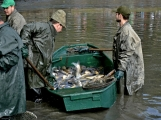 V Rožmitále slavili myslivci i rybáři (74)