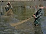V Rožmitále slavili myslivci i rybáři (15)