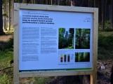 Vojenské lesy otevřely v Brdech naučnou stezku, která představuje minulost i budoucnost brdské přírody (69)