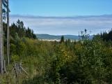 Vojenské lesy otevřely v Brdech naučnou stezku, která představuje minulost i budoucnost brdské přírody (62)