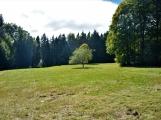 Vojenské lesy otevřely v Brdech naučnou stezku, která představuje minulost i budoucnost brdské přírody (67)