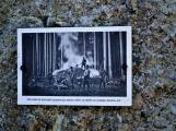 Vojenské lesy otevřely v Brdech naučnou stezku, která představuje minulost i budoucnost brdské přírody (13)
