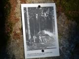 Vojenské lesy otevřely v Brdech naučnou stezku, která představuje minulost i budoucnost brdské přírody (14)