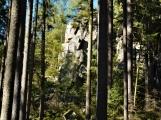 Vojenské lesy otevřely v Brdech naučnou stezku, která představuje minulost i budoucnost brdské přírody (15)