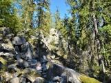 Vojenské lesy otevřely v Brdech naučnou stezku, která představuje minulost i budoucnost brdské přírody (18)
