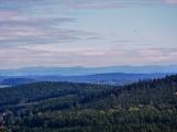 Vojenské lesy otevřely v Brdech naučnou stezku, která představuje minulost i budoucnost brdské přírody (7)