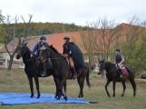 Vrcholí jezdecká sezóna (3)