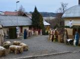 V Čenkově je k vidění ohromný betlém ze sena (2)