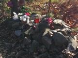 Nedaleko Drkolnova vzniká nelegální hřbitov pro zvířata ()