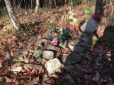 Nedaleko Drkolnova vzniká nelegální hřbitov pro zvířata (3)