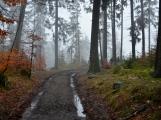 Bláto nebo sníh, na Třemšín se chodí na Nový rok vždy (43)