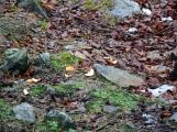 Bláto nebo sníh, na Třemšín se chodí na Nový rok vždy (9)