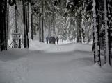 Zimní Brdy uvítaly účastníky pochodu pořádnou sněhovou nadílkou (67)