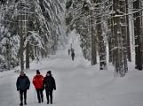 Zimní Brdy uvítaly účastníky pochodu pořádnou sněhovou nadílkou (52)