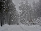 Zimní Brdy uvítaly účastníky pochodu pořádnou sněhovou nadílkou (53)