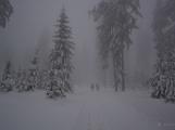 Zimní Brdy uvítaly účastníky pochodu pořádnou sněhovou nadílkou (59)