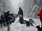 Zimní Brdy uvítaly účastníky pochodu pořádnou sněhovou nadílkou (6)