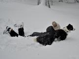 Zimní Brdy uvítaly účastníky pochodu pořádnou sněhovou nadílkou (7)