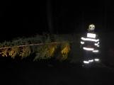 Pád stromu přes silnici si vyžádal noční výjezd hasičů (11)