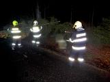 Pád stromu přes silnici si vyžádal noční výjezd hasičů (10)