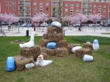 Žáci základních škol vyzdobili náměstí. Jak se vám to líbí? (7)