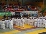 Na turnaj v judu se do Příbrami sjelo 215 závodníků (11)