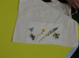 Příbramský lesopark je plný bylinek (4)