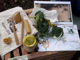 V lesoparku Litavka děti poznaly koloběh přírody ()