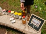 V lesoparku Litavka děti poznaly koloběh přírody (9)