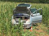 Renault sklidil kukuřici o několik týdnů dříve (2)