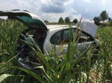Renault sklidil kukuřici o několik týdnů dříve (3)
