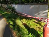 Konečně. Kolem zdi u březohorského hřbitova se již začíná něco dít (1)