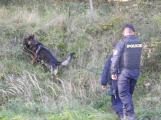 Cvičení záchranných složek: Na Příbramsku havaroval autobus s vězni, dva utekli (9)