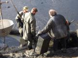 V Novém rybníce plavalo zhruba 7 metráků lína obecného (20)