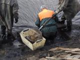 V Novém rybníce plavalo zhruba 7 metráků lína obecného (24)