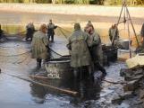 V Novém rybníce plavalo zhruba 7 metráků lína obecného (25)