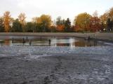 V Novém rybníce plavalo zhruba 7 metráků lína obecného (7)