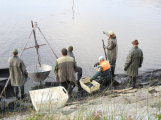 V Novém rybníce plavalo zhruba 7 metráků lína obecného (12)