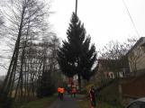 Příbramské náměstí ode dneška zdobí vánoční strom (5)